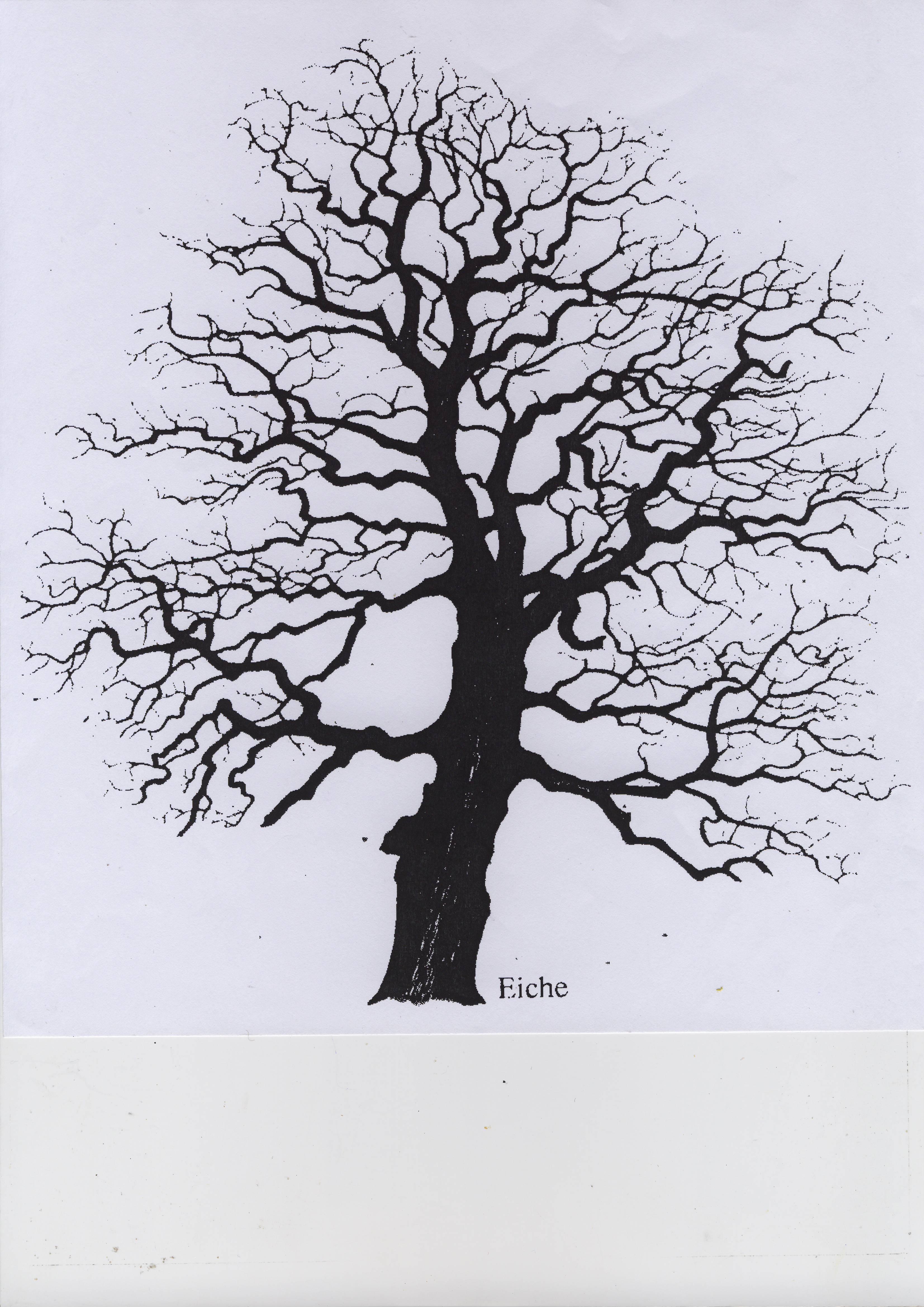Gemeinsame Baumschutzsatzungen | Bürgerinitiative Baumschutz Hohe Börde @QQ_42